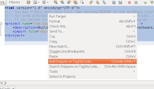 netbeans_add_snippet_from_selection